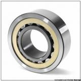 1.181 Inch | 30 Millimeter x 2.165 Inch | 55 Millimeter x 0.512 Inch | 13 Millimeter  CONSOLIDATED BEARING NU-1006 M C/2  Cylindrical Roller Bearings